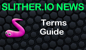 Slither.io | Terms Guide